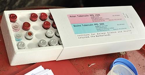Bovine & Avian Tuberculin - TB Hub