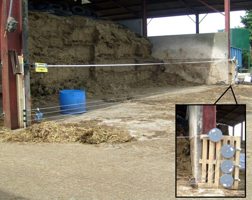 Electric fencing around hay storage - Bovine TB