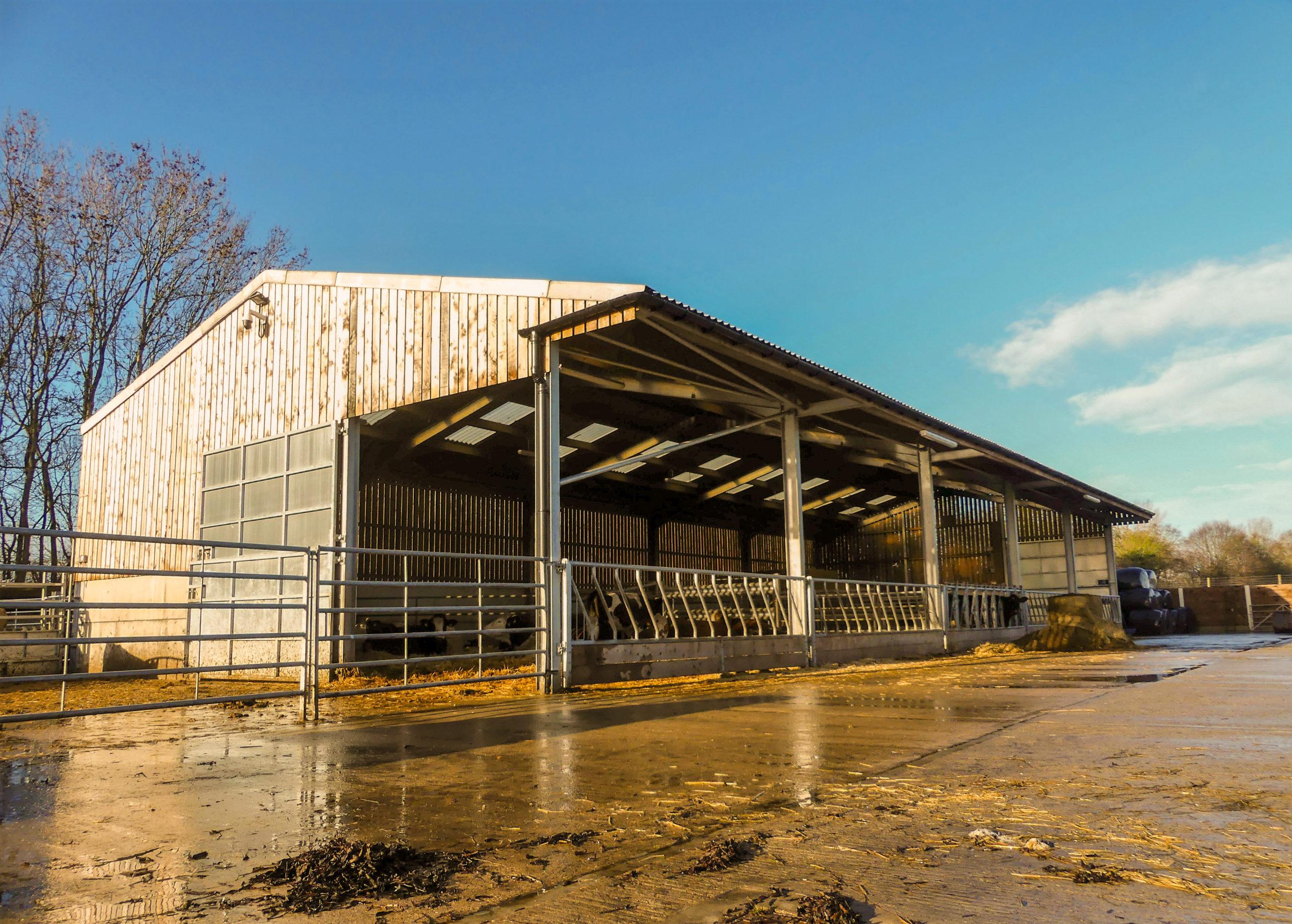 Farm yard barn building - Bovine TB