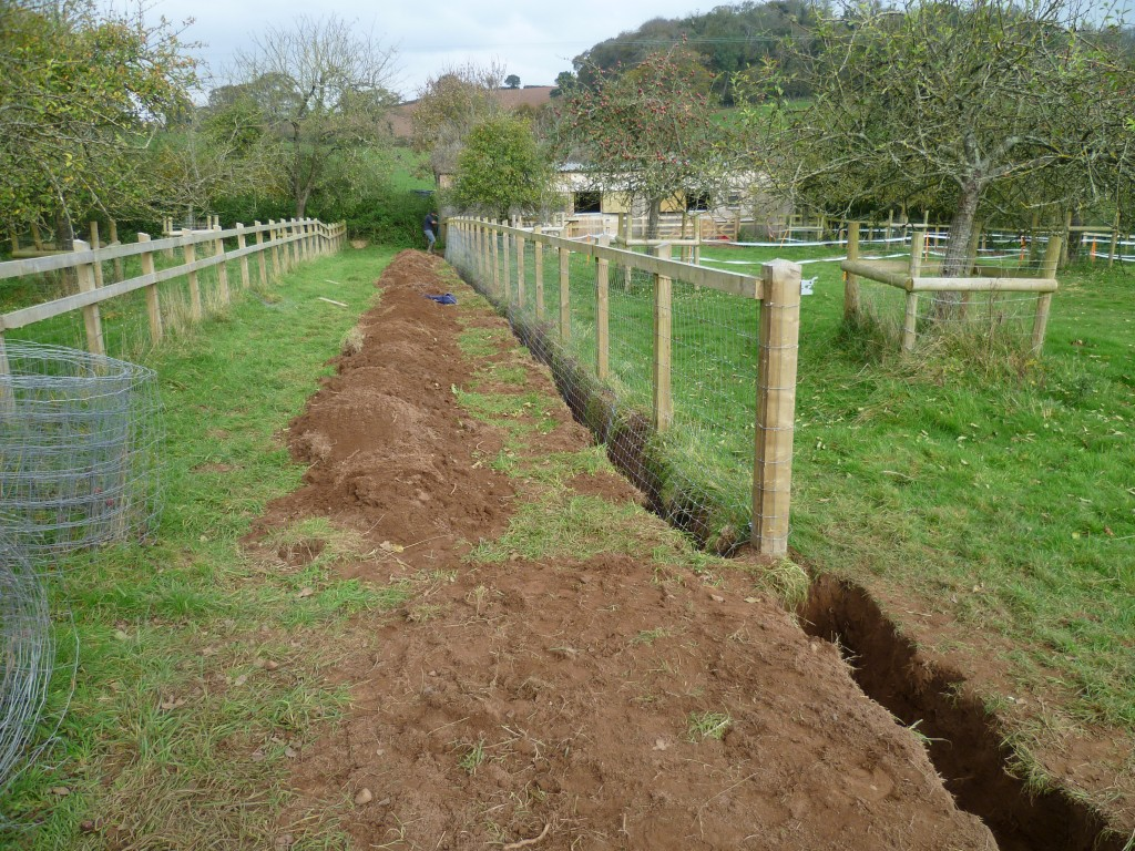New fencing being installed on a farm - TB Hub