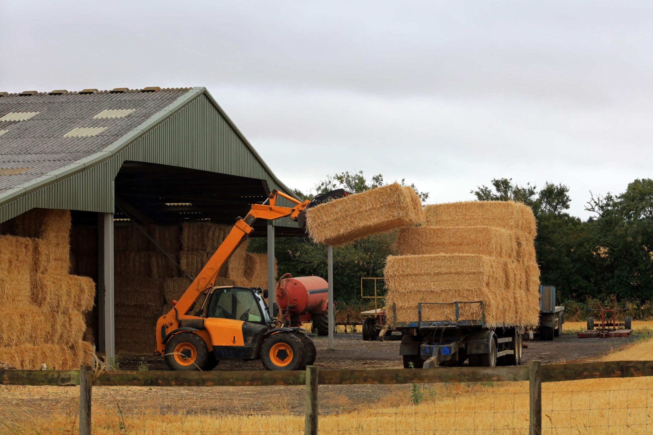 Hay bales being moved - TB Hub
