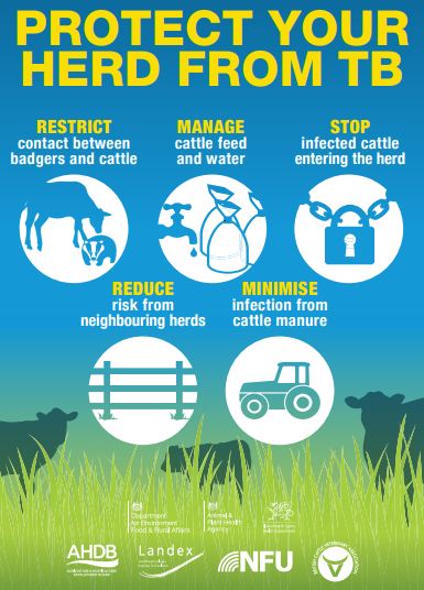 Protect your herd from TB - Bovine TB