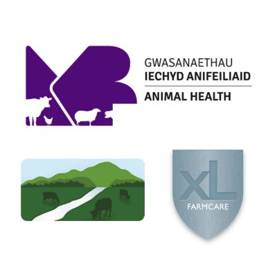 Veterinary partners - Bovine TB