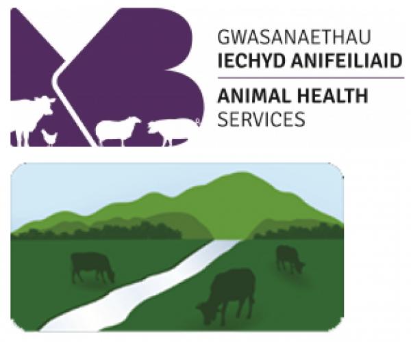 Welsh veterinary delivery partner logos