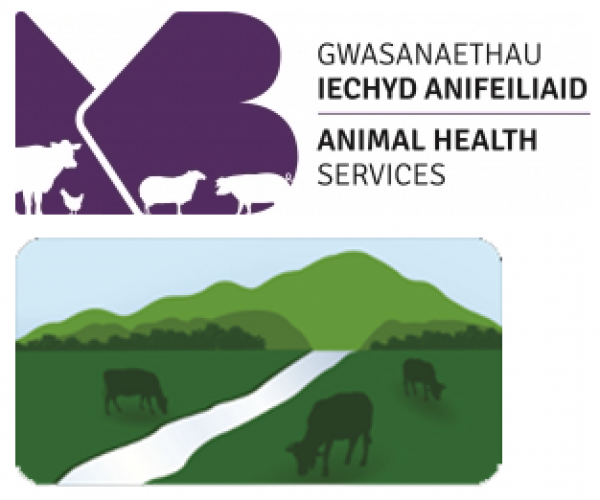 Welsh veterinary delivery partner logos